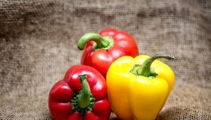 Калорийность, свойства и состав болгарского красного перца