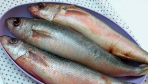 Красноглазка: что за рыба и как ее готовить?