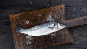 Охлажденная рыба: что такое, технология и срок годности