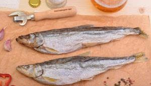 Сушеная корюшка: свойства, хранение и рецепты приготовления