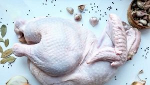 Все об индейке: описание, виды, рецепты и крупные производители мяса
