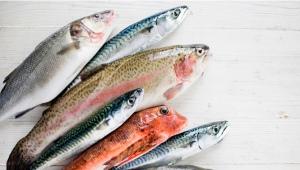 Состав и калорийность рыбы