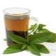 Чай с мелиссой