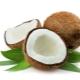Кокос (кокосовый орех)