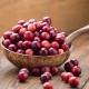 Клюква: свойства ягоды и применение при различных заболеваниях