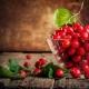 5 полезных рецептов: что можно приготовить из боярышника
