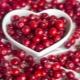 Брусника: полезные свойства и противопоказания для женщин