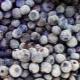 Замороженная черника: полезные свойства и противопоказания