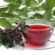 Чай из смородины: польза и вред, советы по сбору и приготовлению