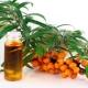 Можно ли использовать облепиховое масло при лечении храпа?