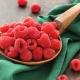 Польза для здоровья и калорийность свежей и замороженной малины