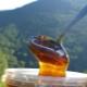 Горный мед: производители и отличительные свойства продукта