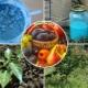 Как правильно обработать виноград бордоской смесью?