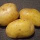 Картофель «Крона»: описание и правила выращивания