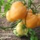 Описание сорта томатов «Золотое сердце»