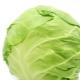 Сажаем капусту на рассаду: когда сеять и как выращивать правильно?