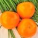 Томат «Апельсин»: описание сорта и процесс выращивания