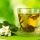 Зеленый чай с жасмином: чем полезен и как его правильно заварить?