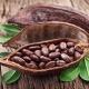 Что входит в состав какао?