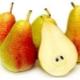 Груша «Форель»: особенности сорта и выращивание