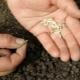 Как замочить семена огурцов перед посадкой?