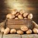 Какие сорта картофеля подходят для разных регионов страны?