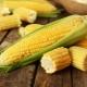 Калорийность и пищевая ценность кукурузы