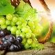 Калорийность и пищевая ценность винограда