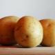 Картофель «Метеор»: описание сорта и выращивание