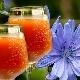 Квас из цикория: полезные свойства и варианты приготовления