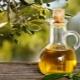Оливковое масло: калорийность и пищевая ценность продукта