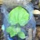 Особенности посадки и выращивания огурцов в 5-литровых бутылках