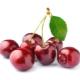 Особенности употребления черешни при похудении