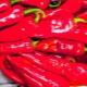 Перец «Рамиро»: характеристика и тонкости выращивания