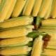 Сколько по времени варить молодую кукурузу?