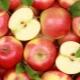 Яблоко: это фрукт или ягода, где выращивают и как применяется?