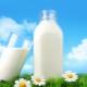 Жирность коровьего молока: какой бывает и от чего зависит?