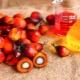 Как и из каких продуктов производят пальмовое масло?