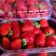Как сохранить клубнику в холодильнике?