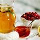 Лечение медом: польза и вред, эффективные рецепты