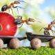 Помогает ли пшено от муравьёв на дачном участке и как с его помощью избавиться от насекомых?