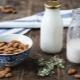 Растительное молоко: что это такое и как сделать в домашних условиях?