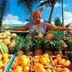 Фрукты Доминиканы, их названия и советы по выбору
