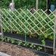 Как делать опоры для винограда своими руками?