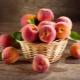 Калорийность и пищевая ценность персиков, нормы употребления фруктов при похудении