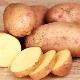 Лечение геморроя картофелем: способы и рекомендации по применению