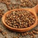 Молотый кориандр: особенности применения и свойства