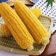 Можно ли употреблять кукурузу при грудном вскармливании и какие есть ограничения?