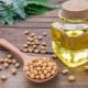Соевое масло: виды, свойства и тонкости применения