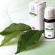 Тонкости применения масла чайного дерева в гинекологии